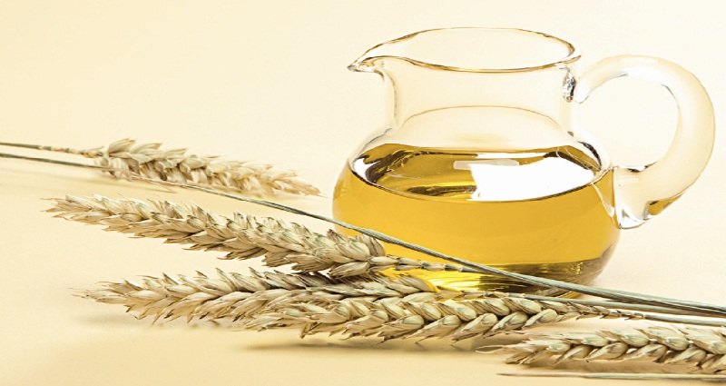 wheat germ to lose weight